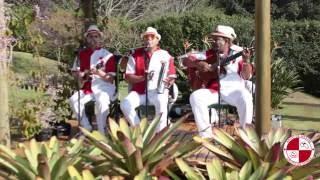 Festa de aniversarío com grupo de Samba Apito de Meste - Pedi ao céu - Almir Guineto