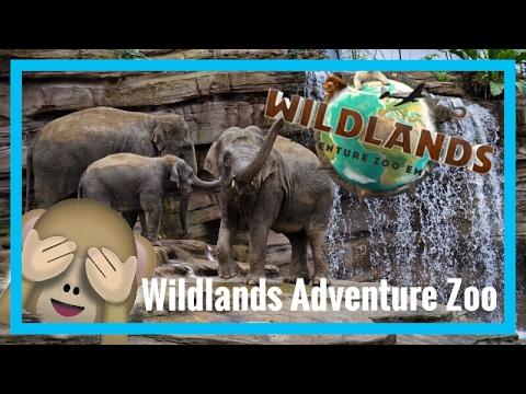 Wildlands Adventure Zoo Emmen 2016
