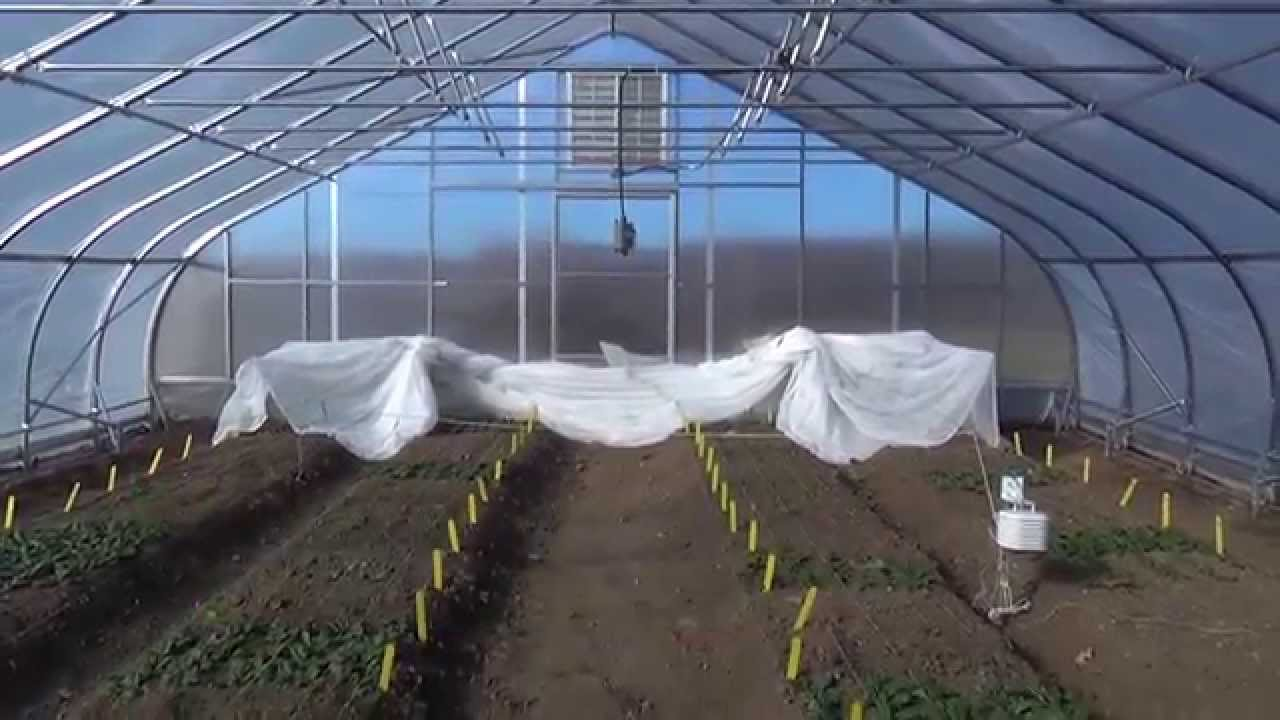 single poly vs double poly by rimol greenhouse systems - Rimol Greenhouse Of Photos