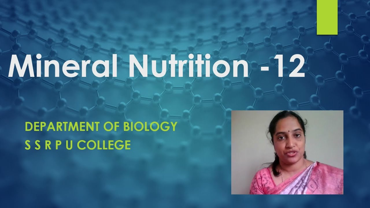 I PUC | BIOLOGY |  MINERAL NUTRITION IN PLANTS - 03