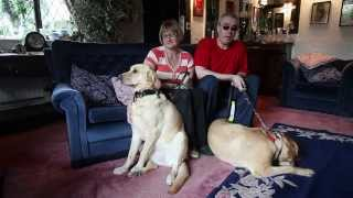 Blind Couple Find Love After Their Dogs Fall For Each Other At A Guide Dog Training Course
