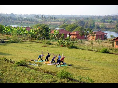 Best Ashram for Yoga Teacher Training in India