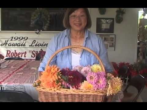 """Seniors"" August 2013 - 3 (Advertised prices expire August 31, 2013)"