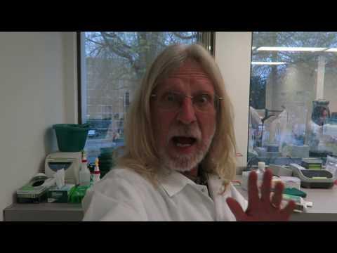 Jorge Tours Phylos Bioscience, Part 1