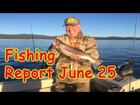 Norcal Fishing Report: June 26
