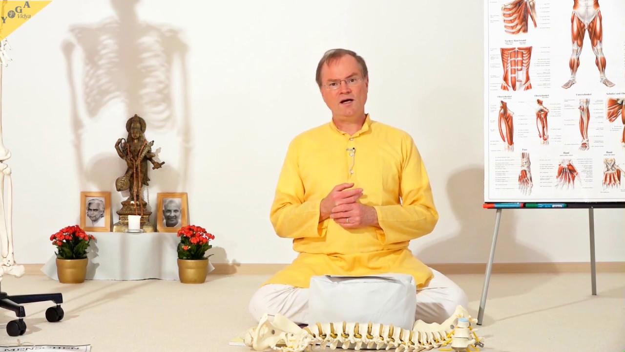 yoga f r den r cken anatomie und physiologie yvs070 youtube. Black Bedroom Furniture Sets. Home Design Ideas