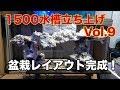 【海水魚水槽】始動!1500サンゴ水槽 立ち上げ Vol.9 盆栽レイアウト完成!!