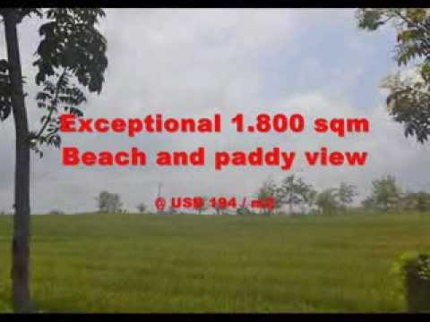 Exotic Property for sale in Bali, land for sale in Tabanan Bali