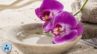 Ayurvedic Spa Music Therapy, Relaxing Spa Music for Massage & Sauna, Cell Purification, Serenity