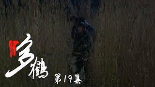 小姨多鹤 19 | Auntie Duohe 19 (主演:孙俪 姜武 闫学晶)