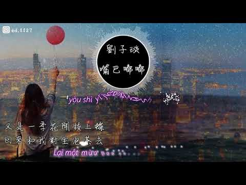 [ Vietsub+ Kara ] Chủy Ba Đô Đô [ Zui Ba du du] - Lưu Tử Toàn || 嘴巴