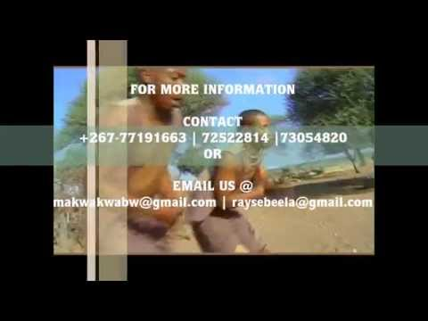 Makwakwa A Palametse Album Launch Promo