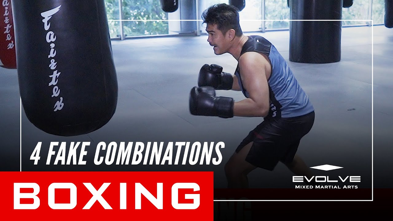 Boxing | 4 Fake Combinations | Evolve University