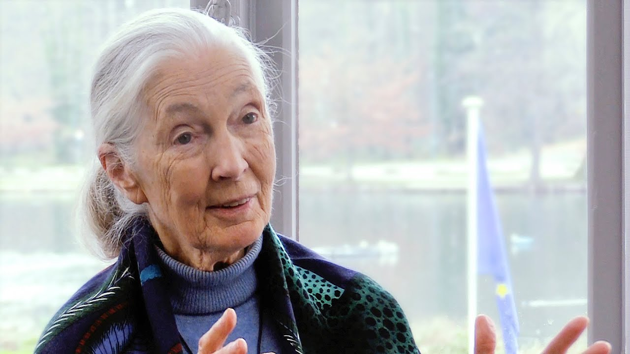 Jane Goodall on environmental activism and people-centred development