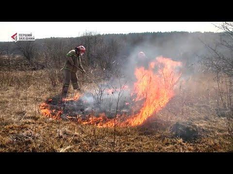 ПЕРШИЙ ЗАХІДНИЙ: 100 пожеж на добу. На Львівщині палять сухостій