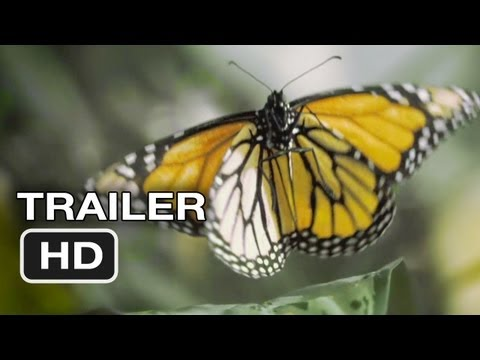 Flight of the Butterflies Official Trailer #1 (2012) - IMAX 3D Movie HD