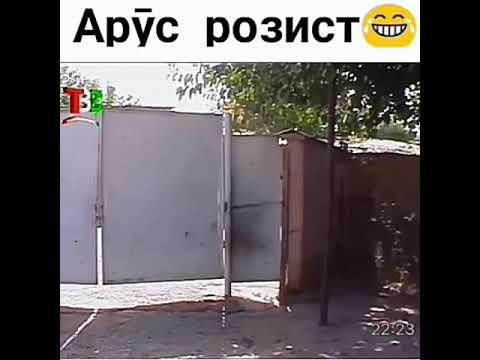 Бобаш розист Ммашам розист Арусам розист