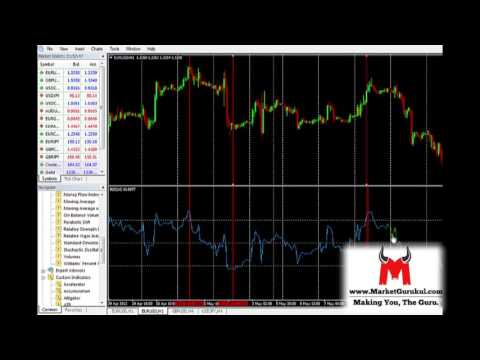 Who are 444 forex pty ltd