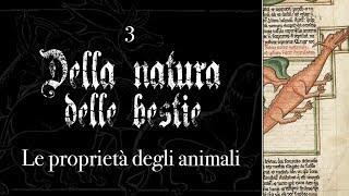 DELLA NATURA DELLE BESTIE #3 - Le proprietà degli animali