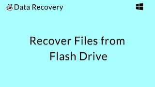 Data Recovery (Windows): Recover Deleted Files from the Flash Drive from a Windows Computer