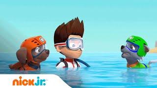 Neem een duik met PAW Patrol   Nick Jr. Nederlands