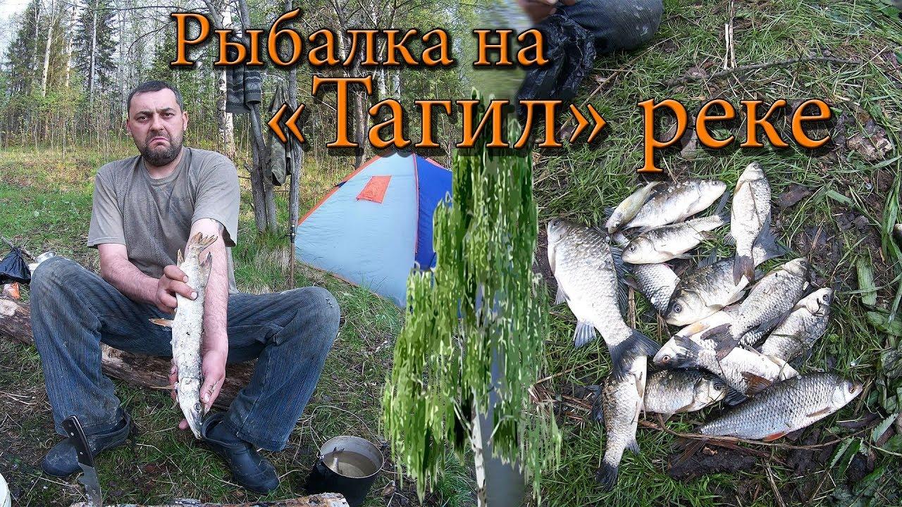 Прогноз клёва рыбы в городе Нижний Тагил