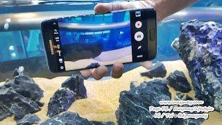 [Preview] Samsung Galaxy S7 กับ ฟีเจอร์เด็ด ที่ไม่ควรพลาด
