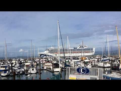 Fukushima news; SAN Francisco Allows Cruise Ships to Dump Waste In Bay to save Starving Sea lions