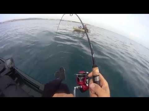 Pesca y picada en directo de Denton