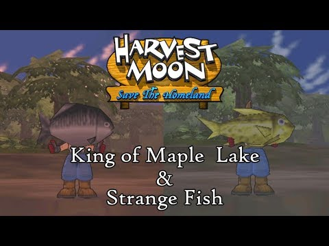 Harvest Moon: Save The Homeland | Catching King Of Maple Lake And Strange Fish