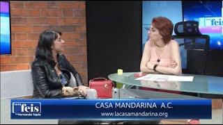 Entrevista con Fernanda Tapia sobre el caso de abuso sexual infantil del Colegio Tlatelli, Tepoztlán