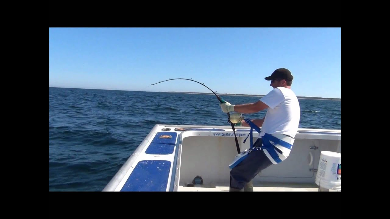 JIGNPOP: 1,000lb Giant with 450g Black Hole Cape Cod Special Standard Rod in PEI (9/3/11)