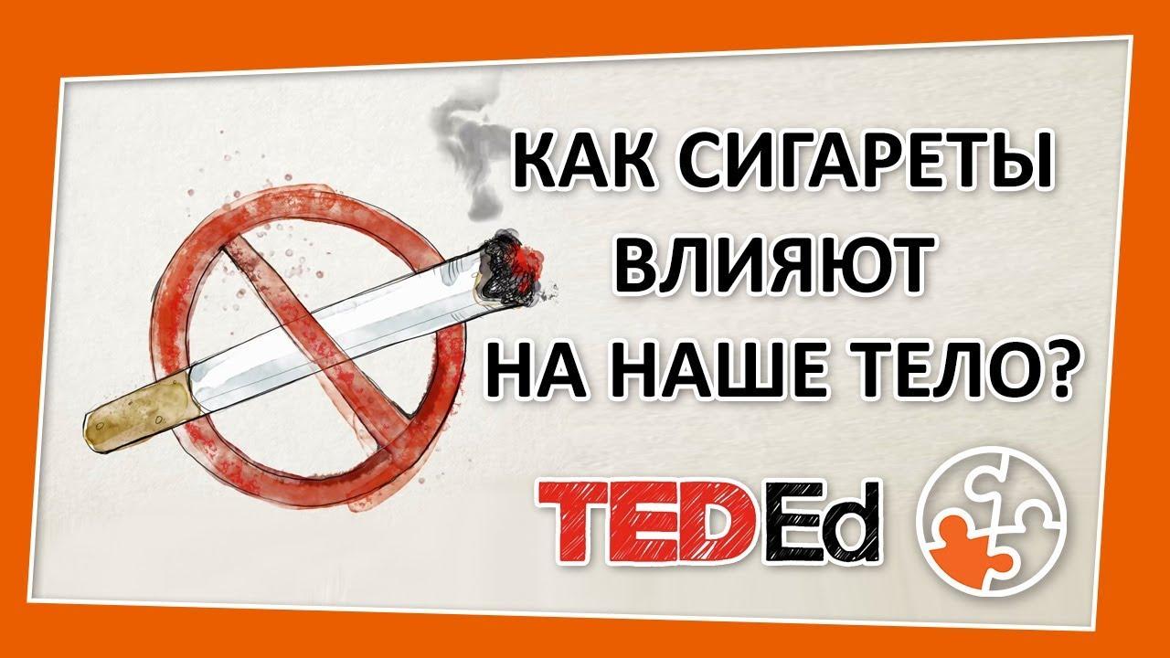 ? Как сигареты влияют на наше тело? [TED-Ed на русском]