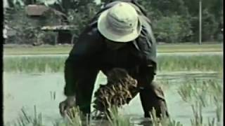 Water, a film produced for the EPA (1976)
