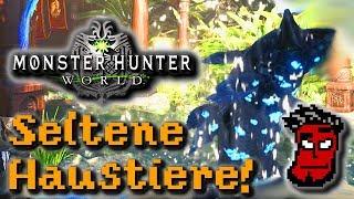Monster Hunter World: ALLE seltenen Tiere für Trophäen / Erfolge fangen! | Gameplay [German Deutsch]