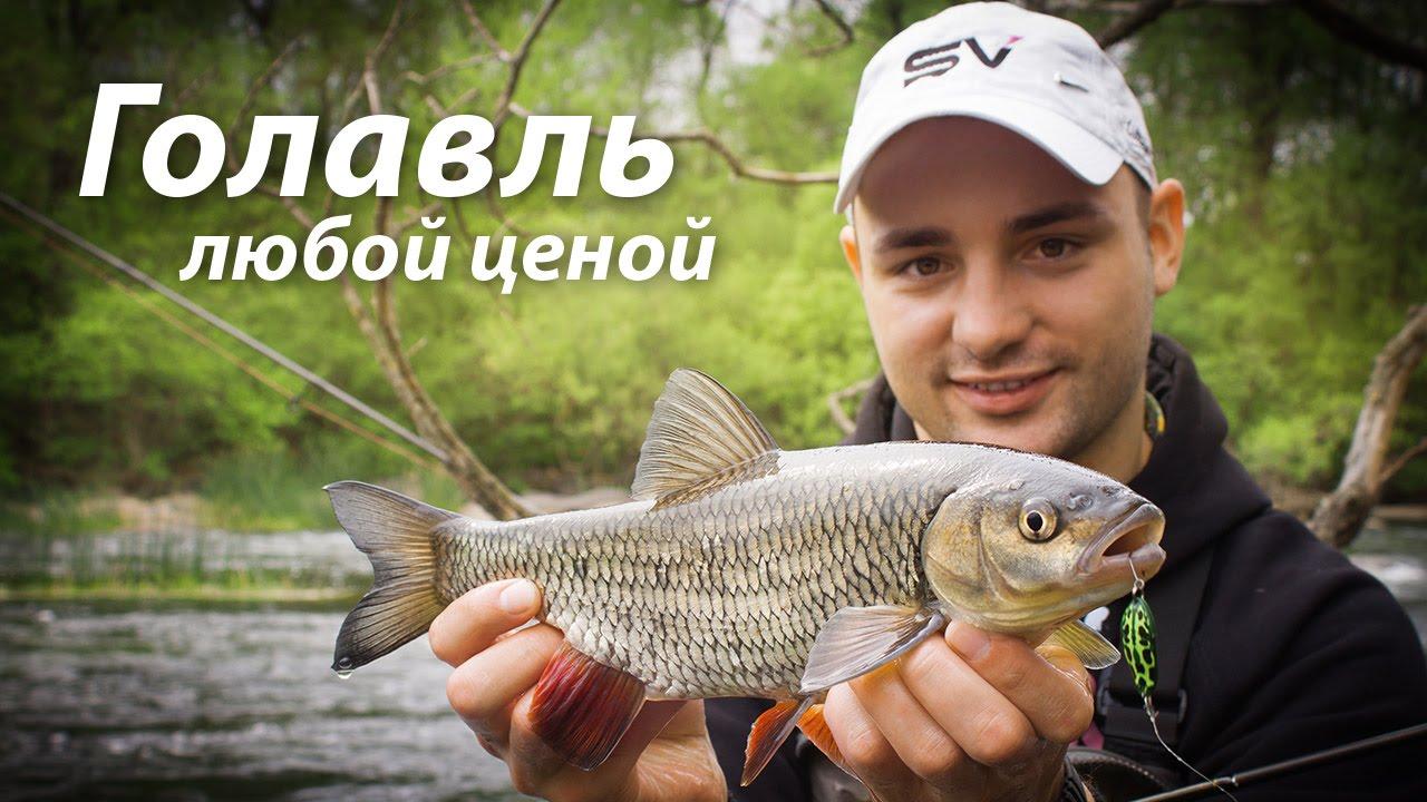 где ловить голавля в украине