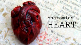 DIY Anatomical Human Heart Polymer Clay Magnet Tutorial