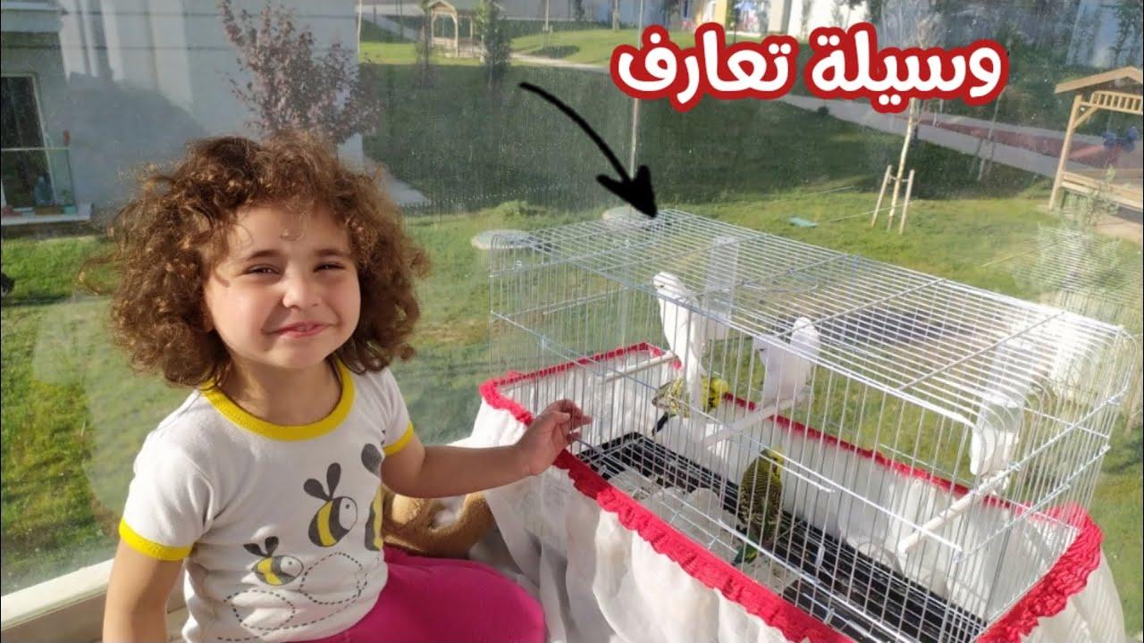 هى تطلب وانا انفذ ما انا معنديش اغلى منها🤷 مصرية فى تركيا