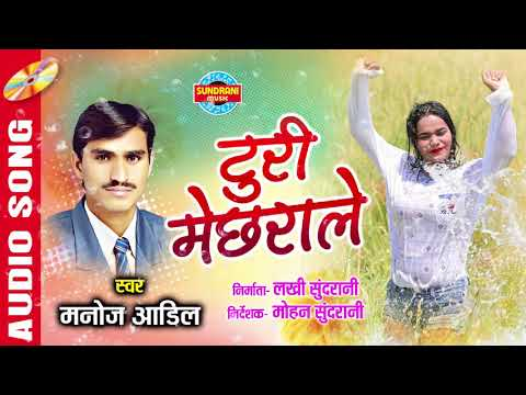 TURI MECHHRALE - टुरी मेछराले - MANOJ AADIL & VIJIYA RAUT - CG SONG - AUDIO SONG