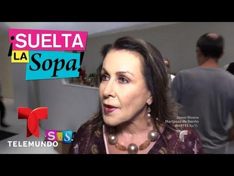 Felipe Nájera responde a comentarios homofóbicos de Laura Zapata   Suelta La Sopa   Entretenimiento