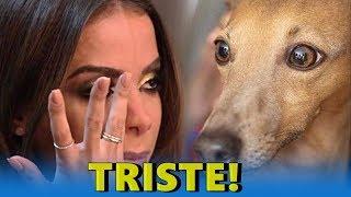 🌀 Anitta entra em grave ameaça e desespero da cantora vem a tona