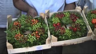 Anadolu Agency - Garland of ornamental pepper