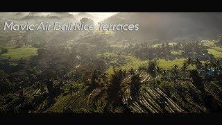 Mavic AIR Bali Rice Terraces highlights in 4K