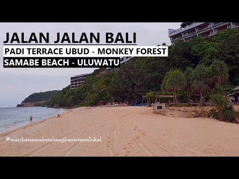 walking-around-bali-~-padi-terrace-ubud-~-monkey-forest-~-samabe-beach---uluwatu-kecak-fire-dance