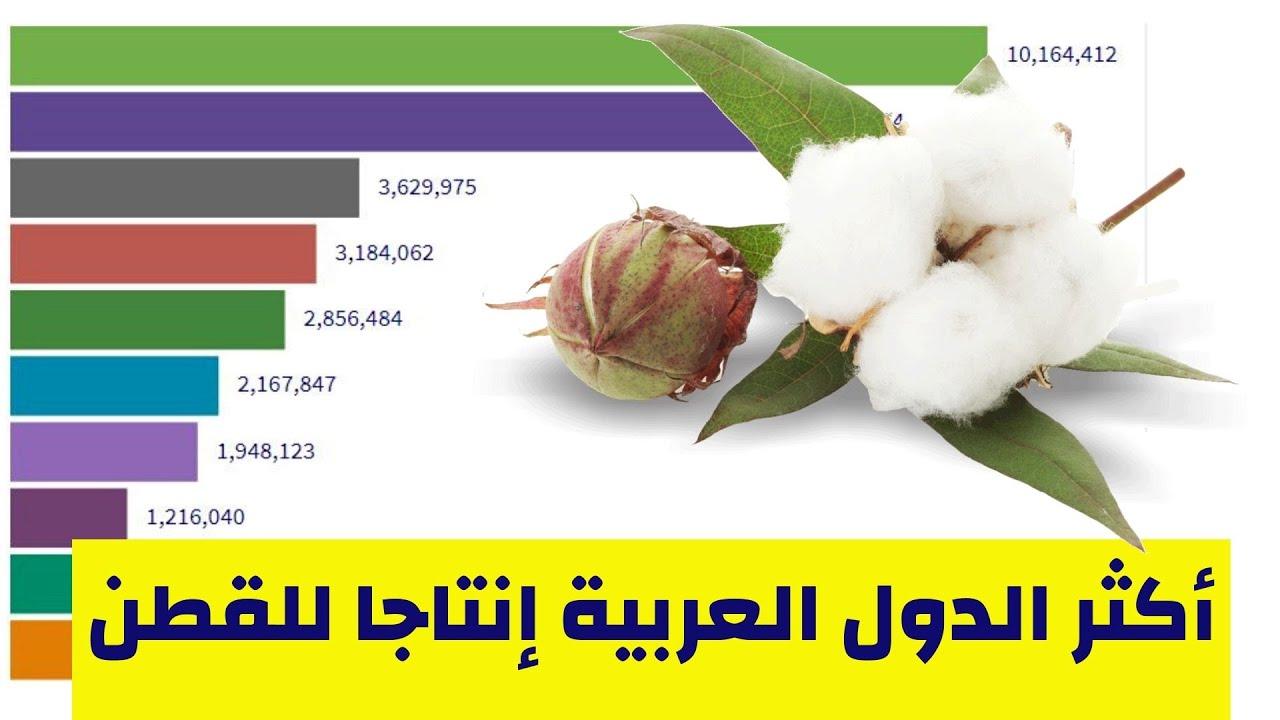 أكثر الدول العربية إنتاجا للقطن من1961 حتى 2018