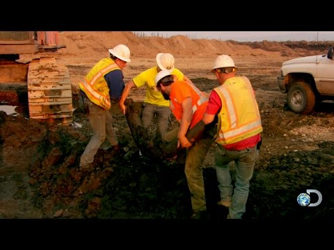 A Mammoth Find | Gold Rush
