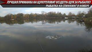 ЛУЧШАЯ ПРИМАНКА НА ЩУКУ ЛОВИТ ВСЕГДА 6 ЩУК ЗА РЫБАЛКУ Рыбалка на спиннинг