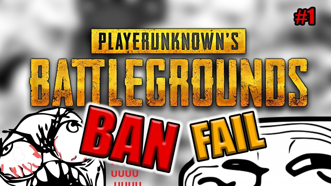 I'm getting banned from the internet (PUBG Funny moments)