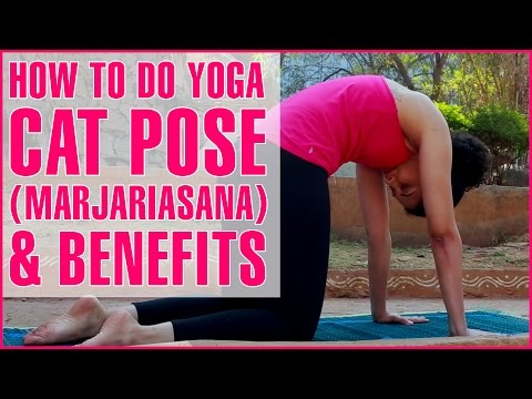 How To Do YOGA CAT STRETCH POSE (MARJARIASANA) - Spine Flexibility