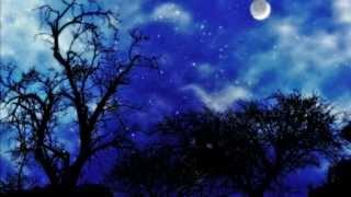 Elderwind - Сияние звезд (Shining Star)